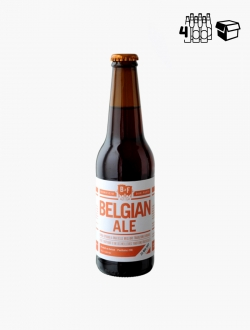 B2F Belgian Ale VP 33 cl P4 - Pack 4